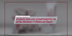 bengue_componentesycomoactua
