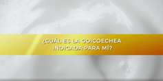 GOICOCHEA_PREGUNTA_CUALESLAINDICADA