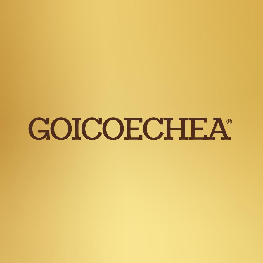 IG LOGOS-GOICOECHEA