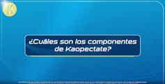 KAOPECTATE_PREGUNTA_COMPONENTES