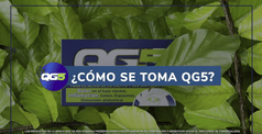QG5_PREGUNTA_COMO